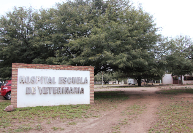 hospital escuela de veterinaria chamical
